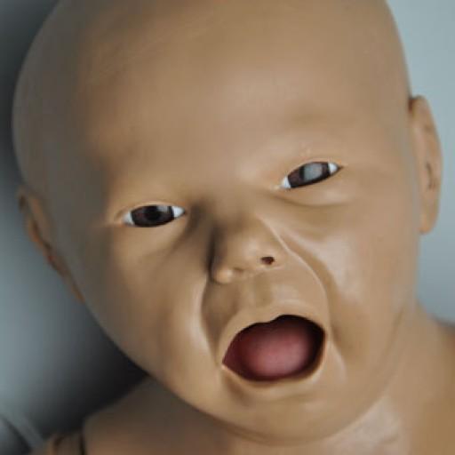 Newborn Simulator