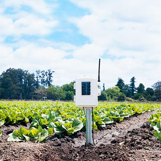 Senseur de température et humidité du sol et du feuillage