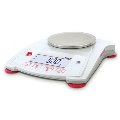 Portable Electronic Balances / Scales