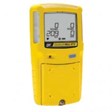 Gas Detector with Internal Sampling Pump