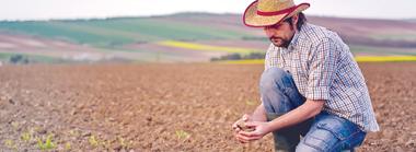 soil-geneq-environment.jpg
