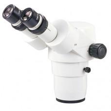 Tête de stéréomicroscope